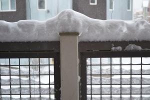 DAMN SNOW